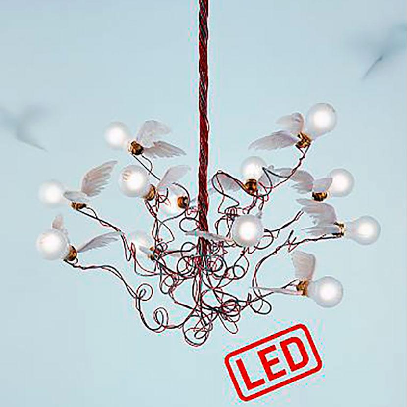 Birdie LED