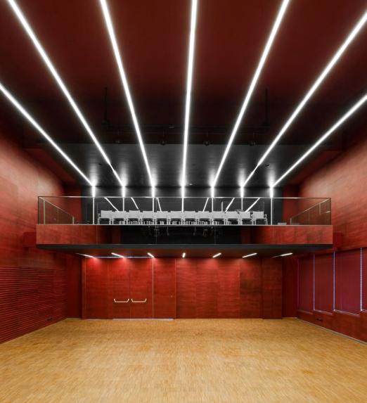 Association and Culture House. Engerwitzdorf, Austria. Arquitecto: Gärtner + Neururer Vöcklabruck. Solución: MINO 100.